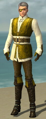 File:Mesmer Monument Armor M dyed front.jpg
