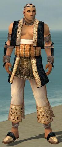 File:Monk Vabbian Armor M dyed front.jpg