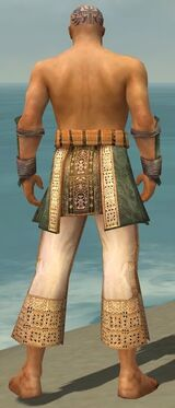 Monk Vabbian Armor M gray arms legs back