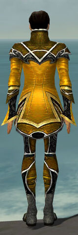 File:Elementalist Shing Jea Armor M dyed back.jpg
