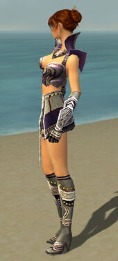 Elementalist Deldrimor Armor F gray side