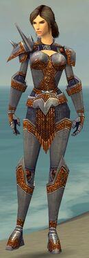Warrior Platemail Armor F nohelmet