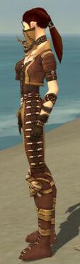 Ranger Krytan Armor F dyed side