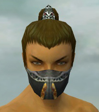 File:Assassin Exotic Armor M gray head front.jpg