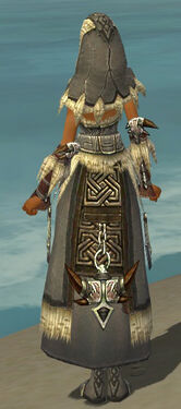 Dervish Norn Armor F gray back