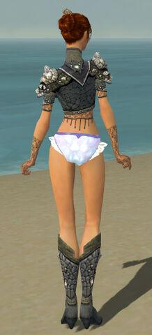 File:Elementalist Elite Stoneforged Armor F gray chest feet back.jpg