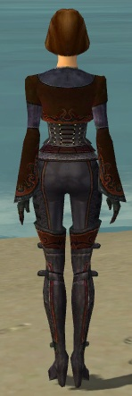 File:Mesmer Elite Rogue Armor F dyed back.jpg
