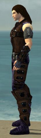 File:Ranger Obsidian Armor M dyed side.jpg