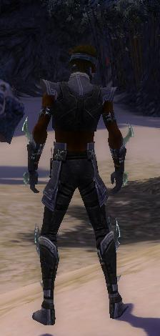 File:Assassin Luxon Armor M gray back.jpg