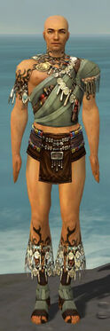 Ritualist Canthan Armor M gray chest feet front