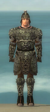 Warrior Canthan Armor M gray front