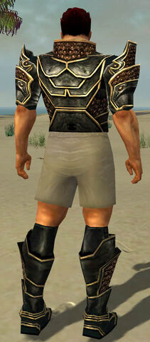 File:Warrior Kurzick Armor M gray chest feet back.jpg