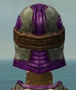 File:Warrior Sunspear Armor F dyed head back.jpg