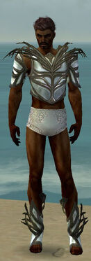 Paragon Primeval Armor M gray chest feet front