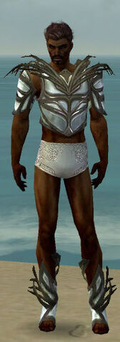 File:Paragon Primeval Armor M gray chest feet front.jpg