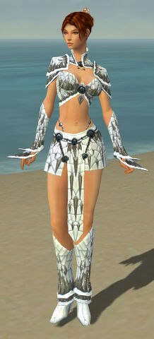 File:Elementalist Elite Iceforged Armor F gray front.jpg