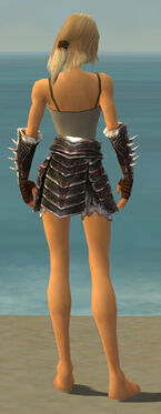 Warrior Norn Armor F gray arms legs back