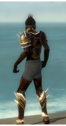 File:Necromancer Norn Armor M gray chest feet back.jpg