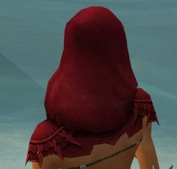 File:Dervish Elite Sunspear Armor F dyed head back.jpg