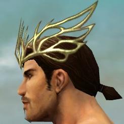File:Dwayna's Regalia M dyed head side.jpg