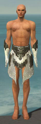 File:Paragon Elonian Armor M gray arms legs front.jpg