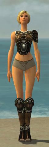 File:Warrior Shing Jea Armor F gray chest feet front.jpg