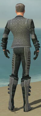 Mesmer Elite Rogue Armor M dyed back