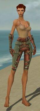 Ranger Ascalon Armor F gray arms legs front