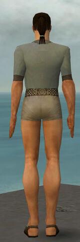 File:Dervish Elonian Armor M gray chest feet back.jpg