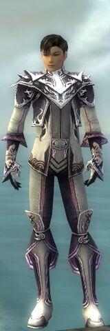 File:Elementalist Dwarven Armor M gray front.jpg