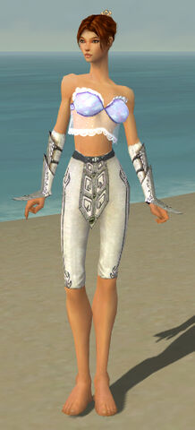 File:Elementalist Tyrian Armor F gray arms legs front.jpg