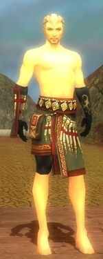 Ritualist Elite Canthan Armor M gray arms legs front