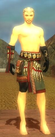 File:Ritualist Elite Canthan Armor M gray arms legs front.jpg