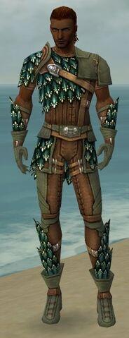 File:Ranger Drakescale Armor M gray front.jpg