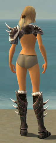 File:Warrior Norn Armor F gray chest feet back.jpg
