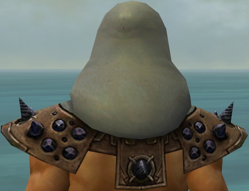 File:Dervish Obsidian Armor M gray head back.jpg