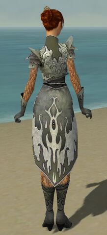 File:Elementalist Elite Flameforged Armor F gray back.jpg