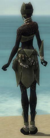 File:Ritualist Kurzick Armor F gray back.jpg