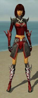 Assassin Deldrimor Armor F dyed front