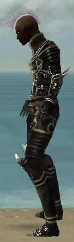 File:Necromancer Shing Jea Armor M gray side.jpg