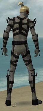 Assassin Obsidian Armor M gray back