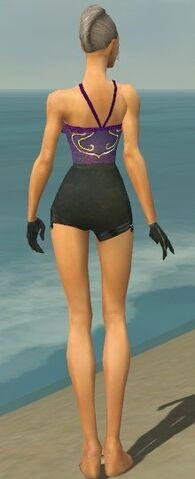 File:Mesmer Elite Noble Armor F gray arms legs back.jpg