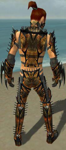 File:Assassin Elite Exotic Armor M gray back.jpg