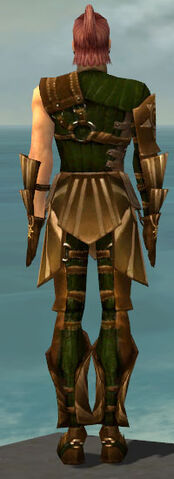 File:Ranger Sunspear Armor M dyed back.jpg