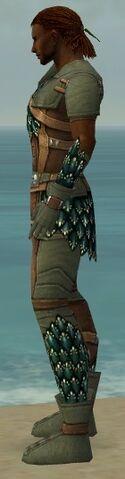 File:Ranger Drakescale Armor M gray side.jpg