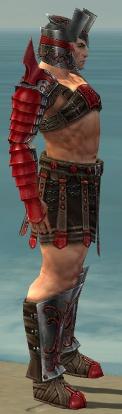 File:Warrior Elite Gladiator Armor M dyed side.jpg