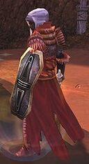 Corsair Commander (Warrior)