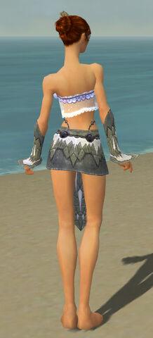 File:Elementalist Iceforged Armor F gray arms legs back.jpg