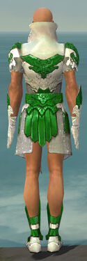 Paragon Elonian Armor M dyed back