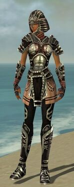 Warrior Ancient Armor F gray front